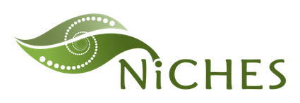 NICHES Is A Childrens Environmental Health And Disease Prevention Research Center Led By Dr Murphy Funded The National Institute Of